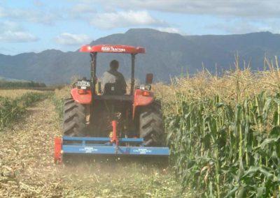 sugarcane-mulcher